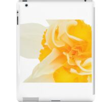Orange 02 - Narcissus / daffodil 'Flower Drift' iPad Case/Skin
