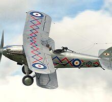 Hawker Demon I K8203 G-BTVE by Colin Smedley