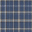 02873 Whatcom County, Washington, E-fficial Fashion Tartan Fabric Print Iphone Case by Detnecs2013