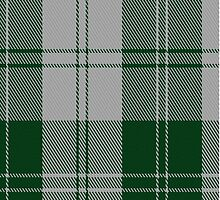 02874 Erskine Green Clan/Family Tartan Fabric Print Iphone Case by Detnecs2013