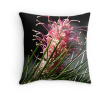 A Pink Grevillea Throw Pillow