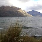 Queenstown lake, NZ  by chelblack