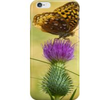 Fritillary On Thistle 2013-2 iPhone Case/Skin