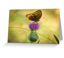 Fritillary On Thistle 2013-2 Greeting Card