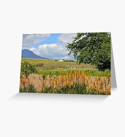 Spier Estate Greeting Card