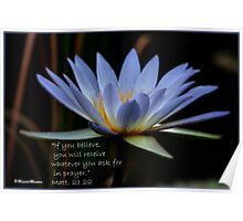 THE BLUE WATERLILY – Nymphaea nouchall Poster