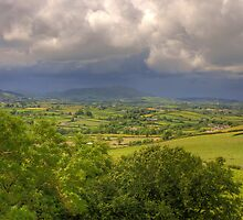 County Down Countryside by Jon Lees