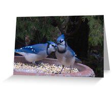 Blue Jays away Greeting Card