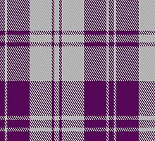 02878 Erskine Purple (Dance) Fashion Tartan Fabric Print Iphone Case by Detnecs2013