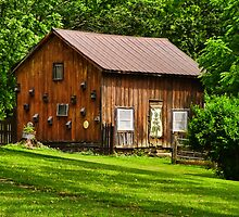Grahmsville NY Country Barn by PineSinger