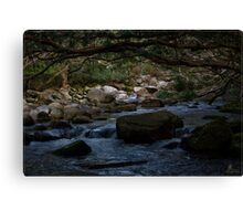Bahana Creek 1 Canvas Print