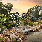 Rose Garden in June by Jessica Jenney