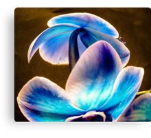 Blue Orchid Bubble~  Canvas Print