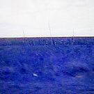 Blue Meadow - Vision by Glenn Cecero