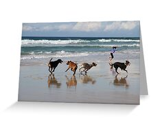 Running Free By the Sea Greeting Card