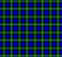 Campbell Tartan by ColorPalette