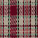 02890 Etive Burgundy Fashion Tartan Fabric Print Iphone Case by Detnecs2013