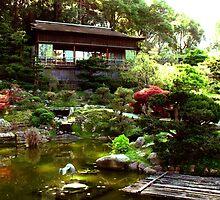 Hakone Gardens, Saratoga, CA 2013 by J.D. Grubb