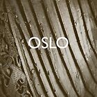 Oslo by homework