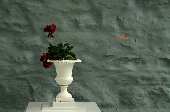 Red Flowers and White Vase by Joanne  Bradley