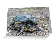 Snapping Turtle V Greeting Card