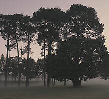 ghostly haze of Curtin Dawn by Brendon Earl Fallon