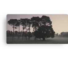 ghostly haze of Curtin Dawn Canvas Print