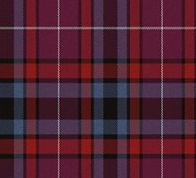 02891 St. Louis County, Minnesota E-fficial Fashion Tartan Fabric Print Iphone Case by Detnecs2013