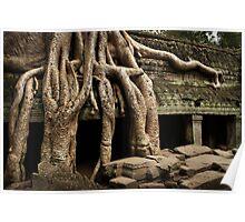 Cambodia - Angkor - Ta Prohm  #04 Poster