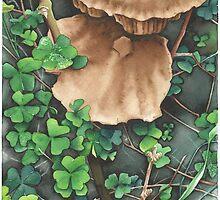 Woodland Mushrooms - Aquamarkers. by Gee Massam
