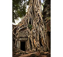 Cambodia - Angkor - Ta Prohm  #06 ... location for film Tomb Raider Photographic Print