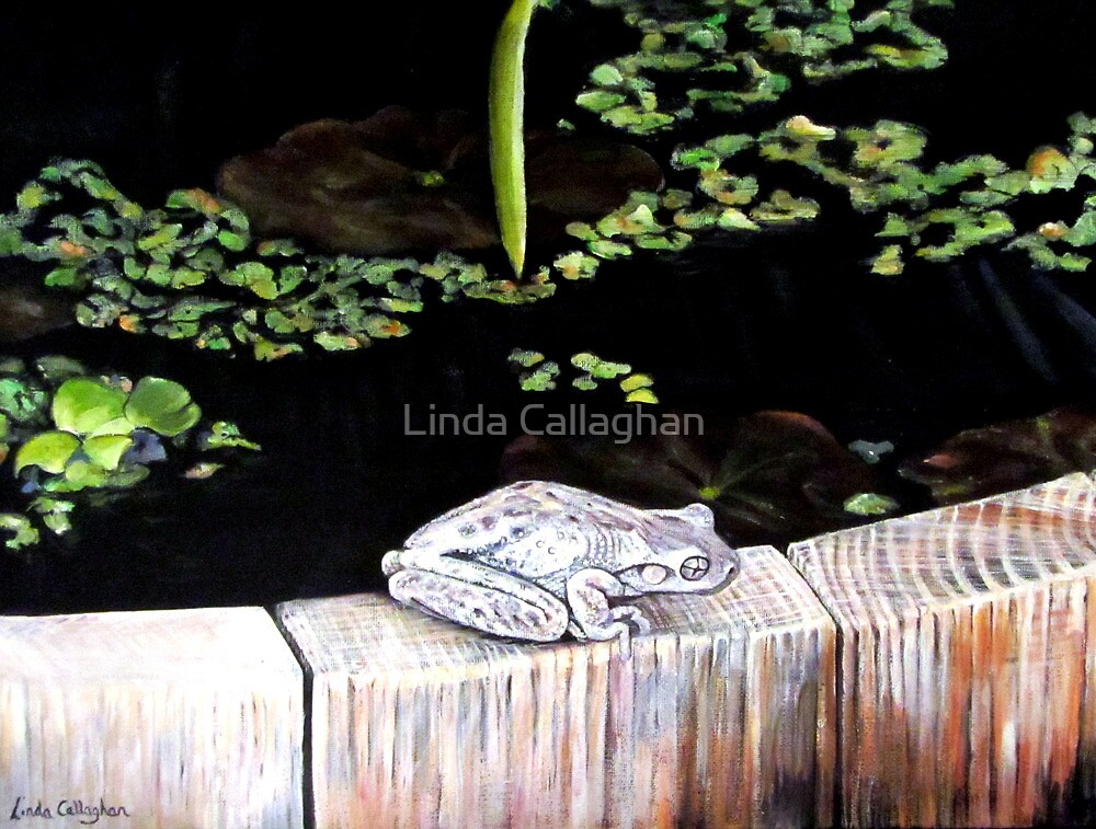 CHILLIN' AT THE LILY POND by Linda Callaghan