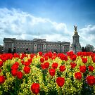 Buckingham Palace and tulips by Dean Messenger
