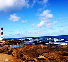 Itapua Beach and Watchtower, Salvador, Brazil by ibadishi