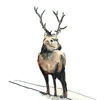 An Elk by Domantas Didziapetris