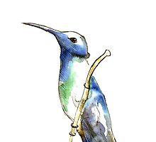 Hummingbird by Domantas Didziapetris