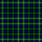 Gordon Tartan by ColorPalette