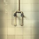 The Stupid Little Shower Head ... inspired by a true story by Michiel de Lange