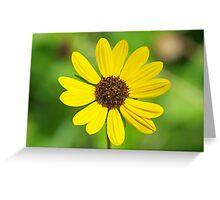 FLOWER CARD Greeting Card