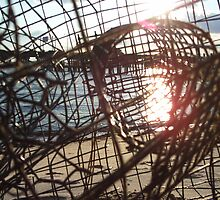 crabs last view by NOSS