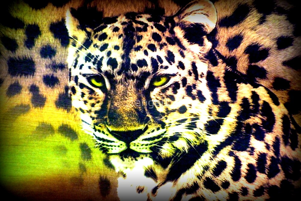 Leopard by ©The Creative  Minds