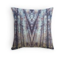 A thousand years in perfect symmetry Throw Pillow