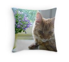 Sir Richard and Purple flowers Throw Pillow