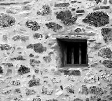 San Juan Window Black and White by marybedy