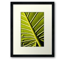 Photosynthesis factory Framed Print