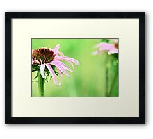 She Learned, Over Time, The Importance Of Standing On Her Own... Framed Print