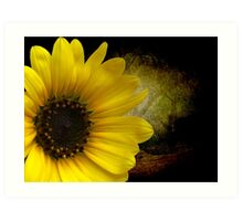 Texas Common Sunflower Art Print