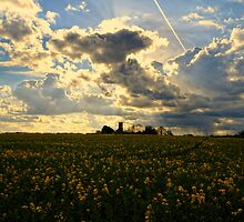 Summer Sky by Nigel Bangert