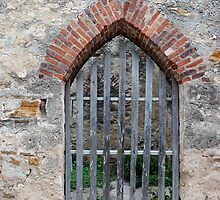 San Jose Arched Door by marybedy