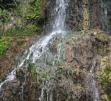 Waterfall Japanese Tea Garden by marybedy